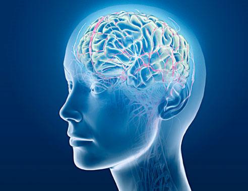 Các loại thuốc bổ não nào tốt nhất hiện nay – Bạn nên biết