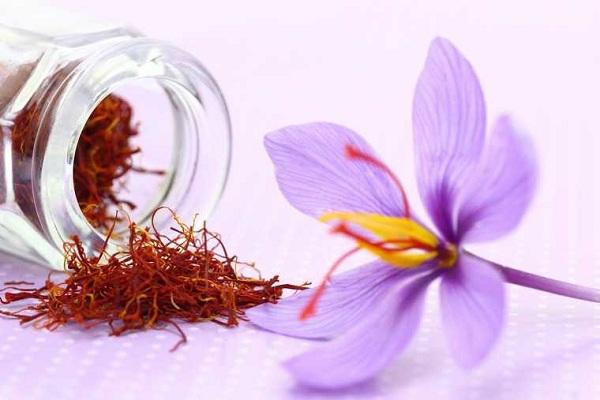 Nhụy hoa nghệ tây Tashrifat của Iran 3