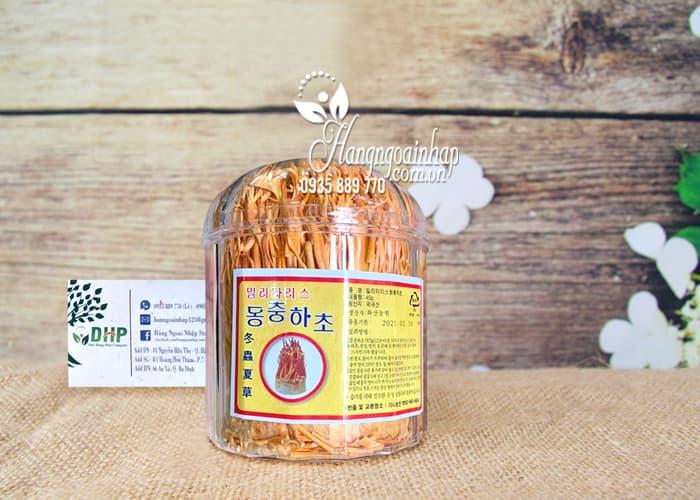 Đông trùng hạ thảo cao cấp hộp 45g sấy khô của Hàn Quốc 7